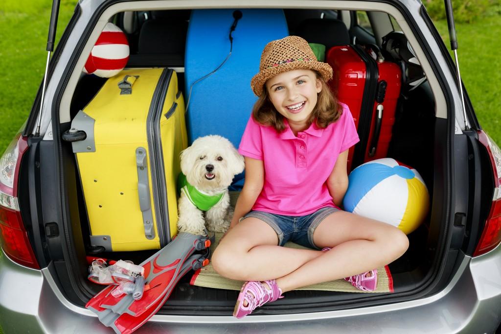 Samochodem na wakacje - płyn hamulcowy